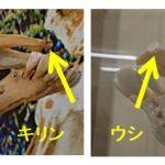 キリンの歯の配列(歯並び)~ウシ、ウマ、ヒトとの比較~