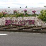 宮崎ブーゲンビリア空港 ~宮崎県の空の玄関口~
